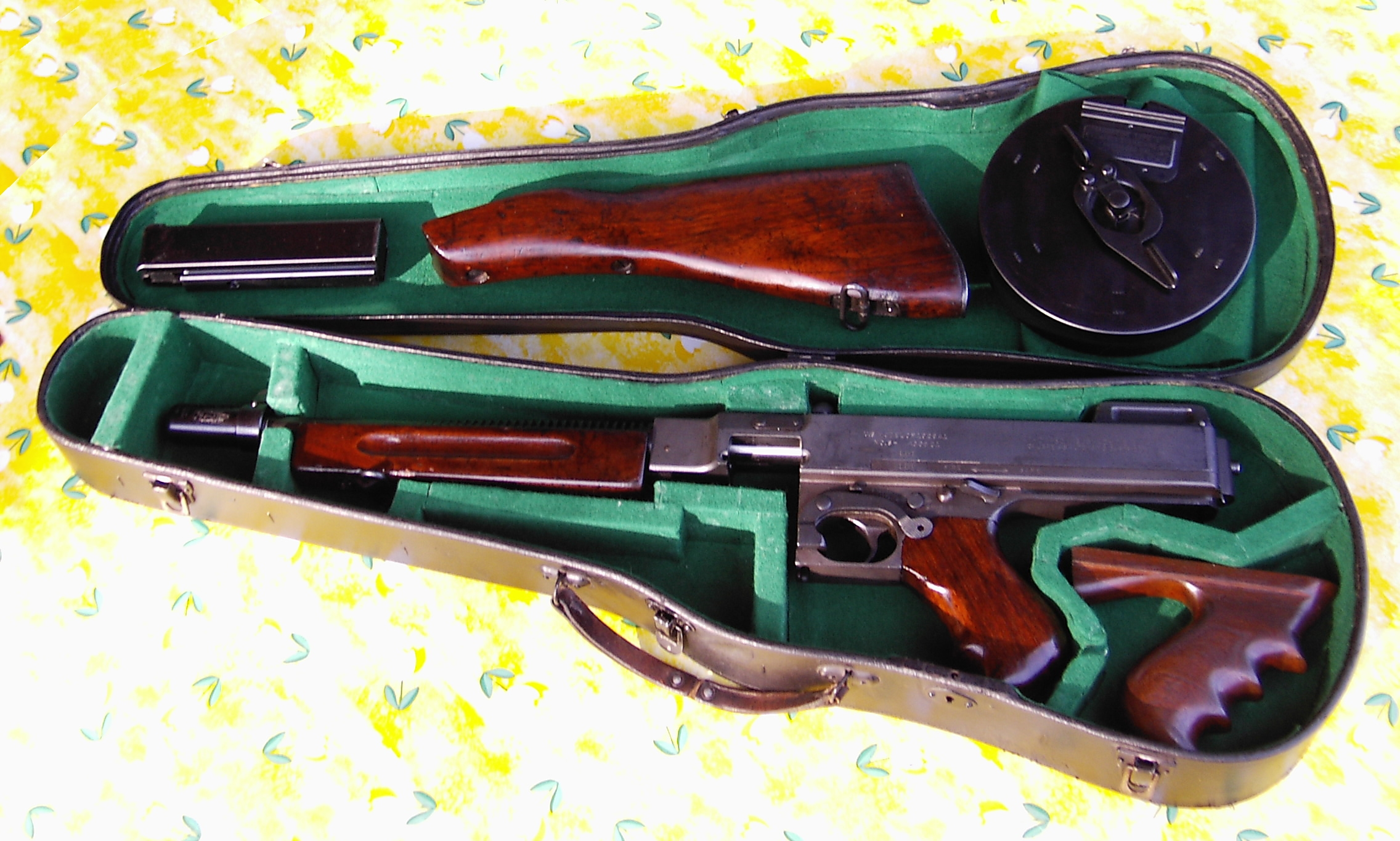 Thompson_in_violin_case.jpg