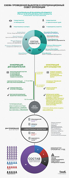 Файл:Election-to-Opposition-Coordination-Council.jpg