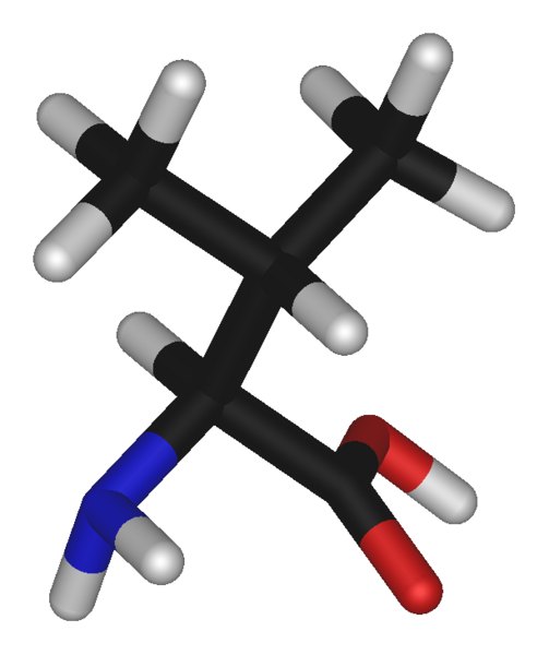 Файл:L-valine-3D-sticks.png