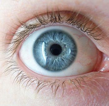 jane elliott blue eyes brown eyes Discriminating against the people who have blue eyes expert jane elliott to that led her to create the blue-eyed-brown-eyed.