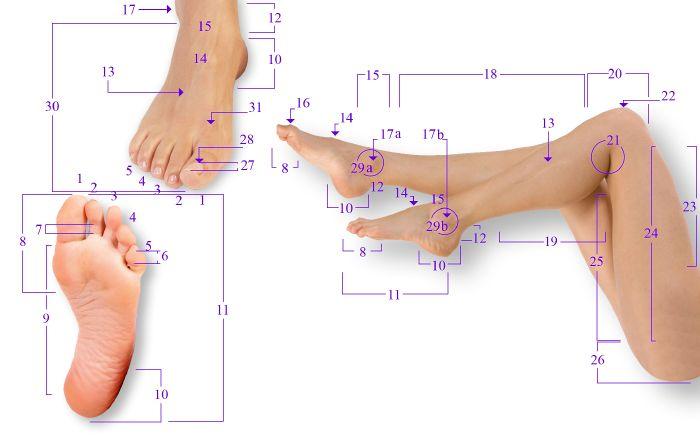 Как называется часть ноги над стопой