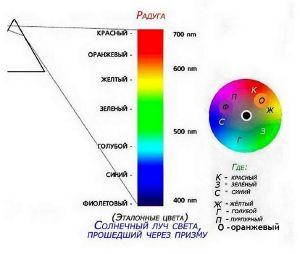 Цвета спектра по порядку