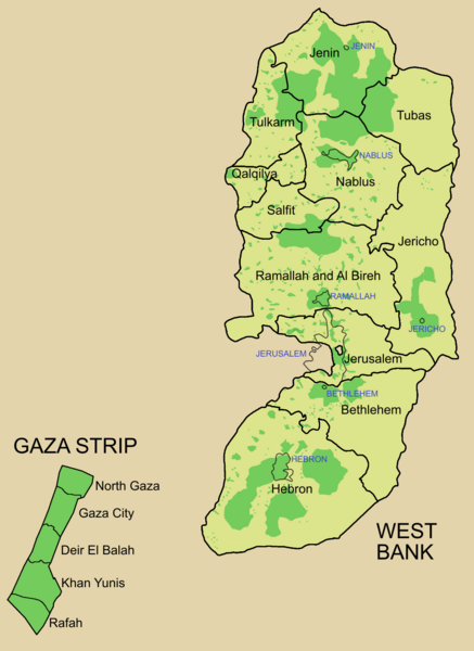Файл:Palestine election map.PNG